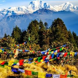 Trek Balcon des Annapurnas