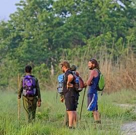 Safari et Yoga Spirituel